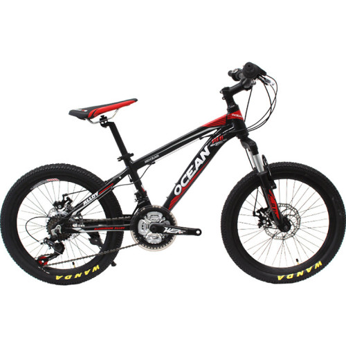 20 inch Alloy frame alloy Steel suspension fork 21 speed Double disc brake Kids bicycle