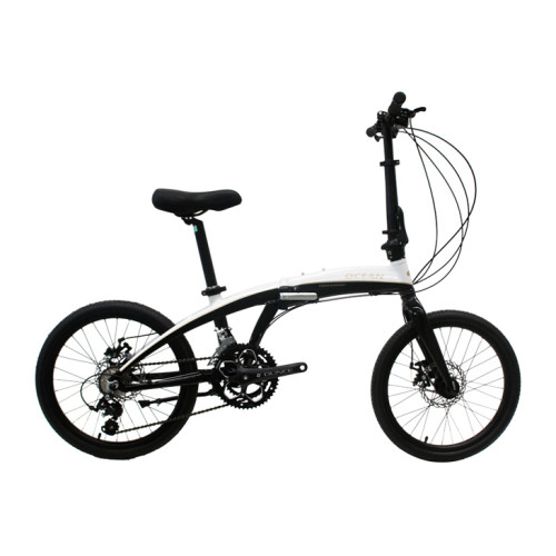 20 inch Alloy frame and alloy rigid fork 18 speed double disc brake folding bicycle