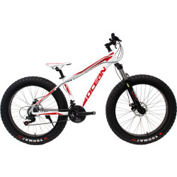 26 inch Alloy frame and alloy lockable Fat beach bike EZ-FIRE 21 speed Disc brake Fat bicycle