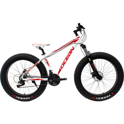 26 inch Alloy frame and alloy lockable Fat beach bike EZ-FIRE 21 speed Disc brake Fat bicycle OC-17M26021FB1