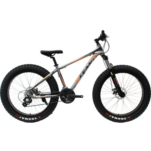 26 inch Alloy frame and hi-ten steel lockable Fat beach bike China 24 speed Disc brake Fat bicycle