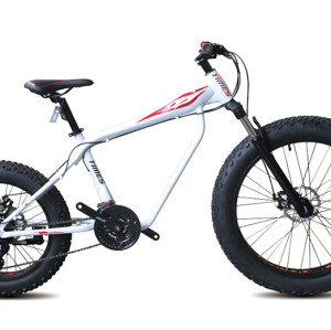 Aluminum alloy Front 26 inch rear 20 inch SHIMANO 24 speed Double disc brake Fat bicycle