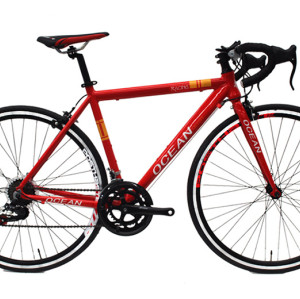 700C racing Alloy frame and Steel rigid fork SHIMANO 14 speed Double wall rim road bike OC-17R70014AA