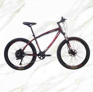 Adult Mountain Bike 26