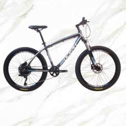 Adult Mountain Bike 26