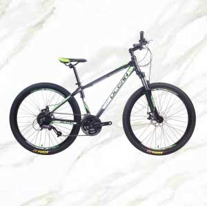 Boutique bicycle Mountain Bike 27.5 inch Alloy Frame Steel Fork 27sp Double Disc Brake MTB For Sale