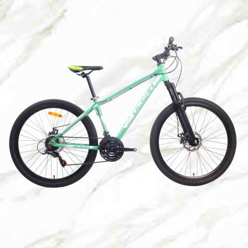 27.5 inch 21sp MTB Adult Bike Alloy Frame Steel Fork Double Disc Brake Mountain Bike