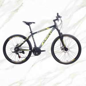 New Style bicycle Mountain Bike 26 inch Alloy Frame Steel Fork 21sp Double Disc Brake MTB For Sale