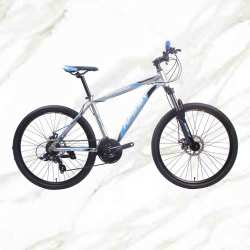 Cheap Price Boutique bicycle Mountain Bike 26 inch Alloy Frame Steel Fork 21sp Double Disc Brake MTB For Sale