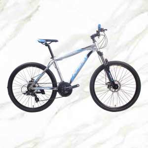 Cheap Price Boutique bicycle Mountain Bike 26 inch Alloy Frame Steel Fork 21sp Double Disc Brake MTB For Sale OC-19M020