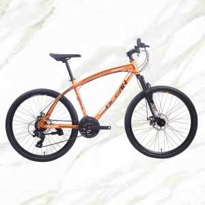 Boutique bicycle Mountain Bike 26 inch Steel Frame Steel Fork 21sp Double Disc Brake MTB For Sale