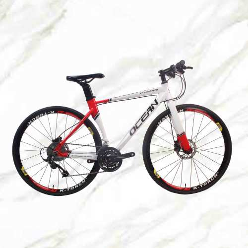 Good Products New Style Road Bike 700c Alloy Frame Alloy Fork 30sp Double Disc Brake Adult For Sale