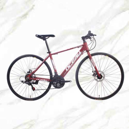 Cheap Price Good Product Road Bike 700c Alloy Frame Steel Fork 21sp Double Disc Brake For Sale