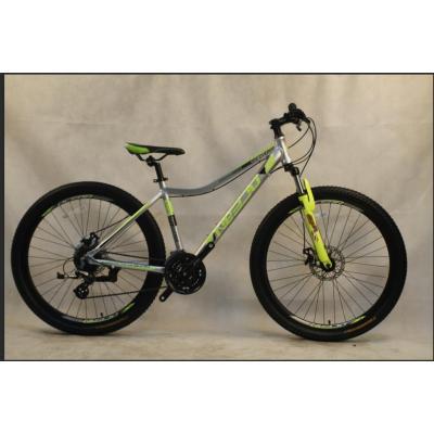 29 inch Alloy frame 21 speed disc brake Mountain bike MTB bicycle OC-20M29A009