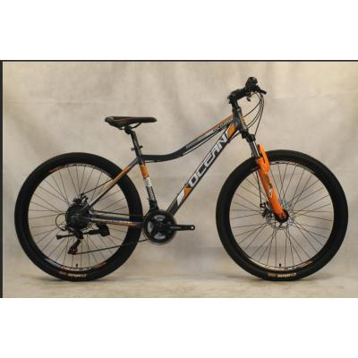 29 inch Alloy frame Half-alloy fork 21 speed disc brake Mountain bike MTB bicycle OC-20M29A010