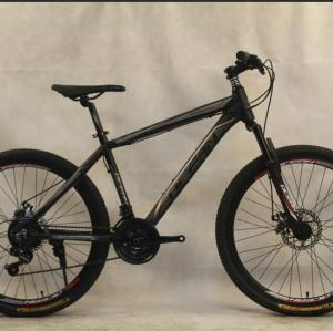 29 inch Alloy frame Half-alloy fork 21 speed disc brake Mountain bike MTB bicycle OC-20M29A015