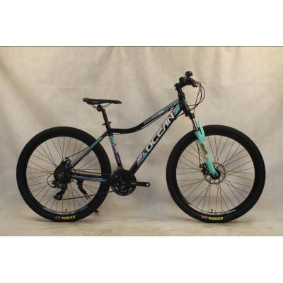 29 inch Alloy frame Half-alloy fork 21 speed disc brake Mountain bike MTB bicycle OC-20M29A018