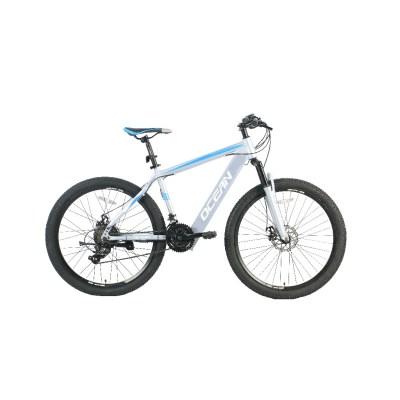 26 inch 36V 250W Mountain e-bike brushless hub motor lithium battery Chinese OC-20M29E008