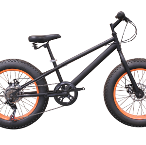 20 inch STEEL FRAME SHIMANO 7SP Snow bike