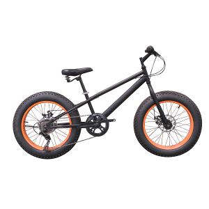 20 inches STEEL FRAME SHIMANO 7SP Snow bike