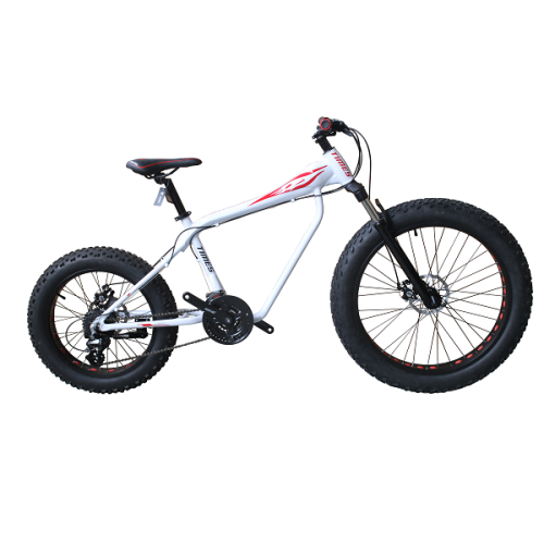 26 INCH ALLOY FRAME FAT/SNOW BIKE  ON ROAD