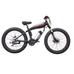 Special E-bike for fat bike