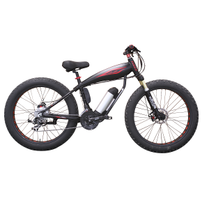 Special E-bike for fat bike