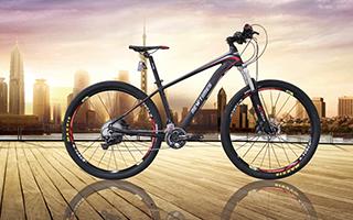 自行车定制,自行车制造,自行车出口
