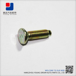 Hot Sales High End Durable Auto Cylinder Head Bolts