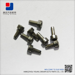 Competitive Fasteners Cheap Made In China Best Price Plastic Fastener And Clips