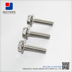 China Special Custom OEM Factory Customized Fastener Manufacturer