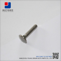 Environmental Promotional Competitive Price Printed Metal Fasteners