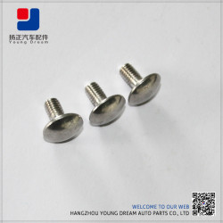 High End Top Quality Factory Made Stainless Steel Fasteners China