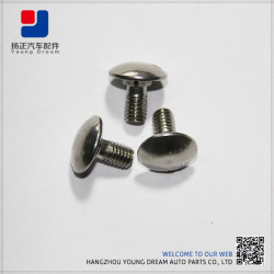 Stainless Steel Professional Certificated Anti Theft Nuts