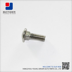 Competitive Fasteners Cheap Customized Stainless Steel Cap Bolts