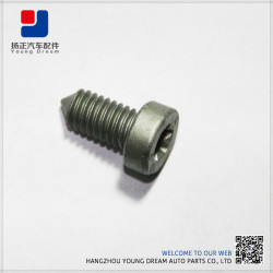 Alibaba Wholesale New Product OEM Customized Bolt Allen