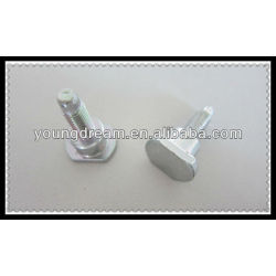 Stainless Steel Special Auto Fasteners Step Bolt T Bolt