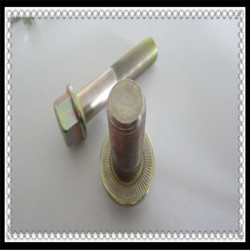 High Quality Hex Head Flange Bolt 12.9