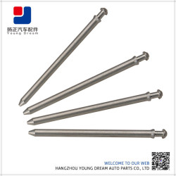 OEM Technical Top Quality Durable Hot Sales Stainless Steel Guide Rod
