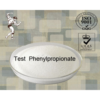 Muscle Building Steroids Testosterone Phenylpropionate Retandrol Powder (1255-49-8)
