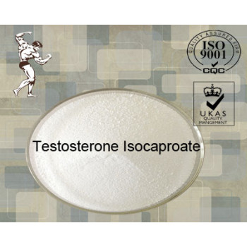 98% Adrenal Cortex Raw Steroid Hormone Powder Testosterone Isocaproate