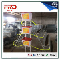 FRD-Hot dipped galvanized layer chicken cage