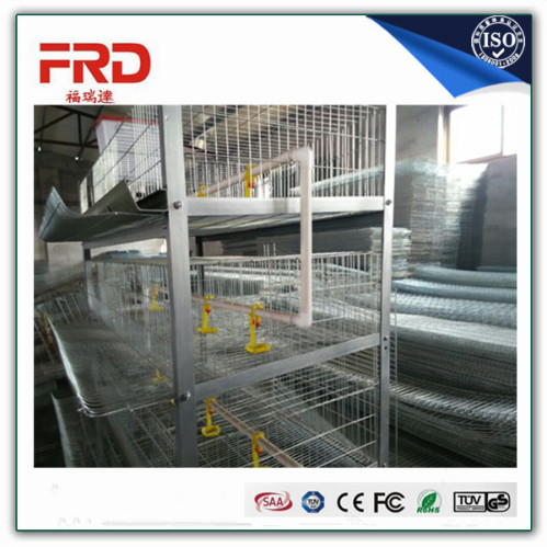 Low-Cost Layer Egg Chicken Cage/Poultry Farm House Designs | FRD