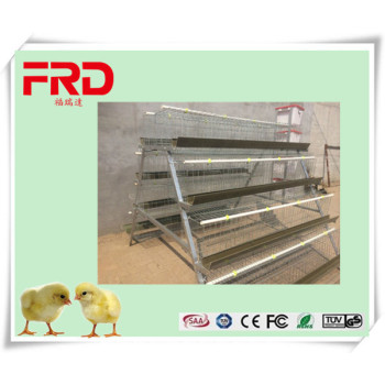 FRD FRD CE certification chicken breeding cage/bamboo chicken cage plastic made in China