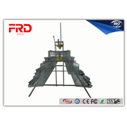 FRD china manufacture feed chicken cage production line