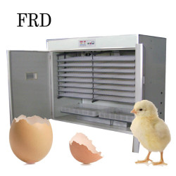 solar energy China manufacture FRD-3168 chicken egg incubator and hatcher