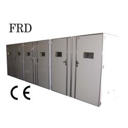 Industry multi-egg incubator FRD-50688  solar energy incubator & hatcher