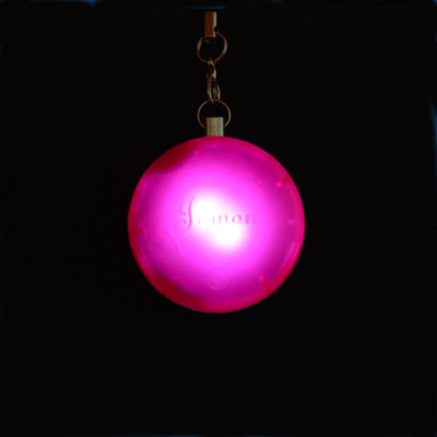 Cheap Automatic Motion -activated Purse light