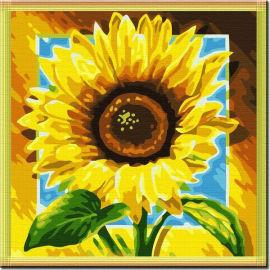 Sonnenblumen Ölbild nach zahlen- en71-3- astmd- 4236 acrylfarbe- Lack Junge 40*40cm