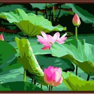Factory price diy oil paint by number on canvas 2015 paintboy new flower design GX6125